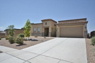 Rio Rancho Single Family Home For Sale: 2643 Vista Manzano Loop NE