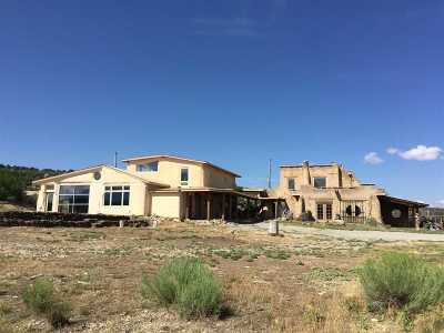 Taos County Single Family Home For Sale: 120 Lower Arroyo Hondo