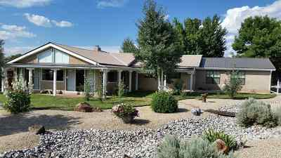 Taos Single Family Home For Sale: 1305 Amador Lane