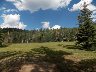 Red River NM Residential Lots & Land For Sale: $200,000
