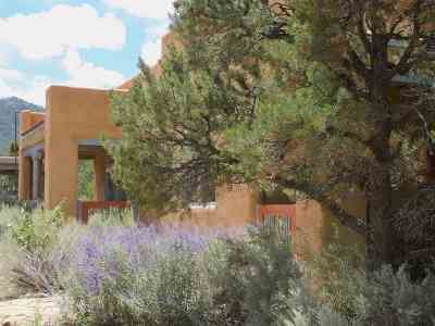 Taos Single Family Home For Sale: 99 Stakeout Drive