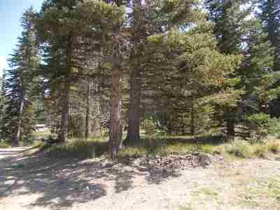 Red River Residential Lots & Land For Sale: 207 Mountain View