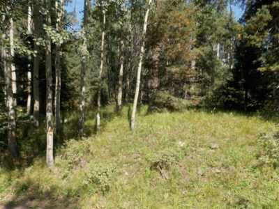 Red River Residential Lots & Land For Sale: 403 Shady Lane