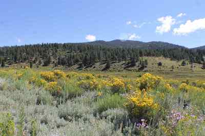 Taos Residential Lots & Land For Sale: Tract A-1 Cinquefoil Lane