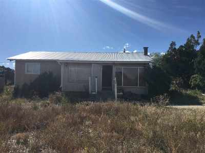 Single Family Home For Sale: 38310 Us Hwy 285