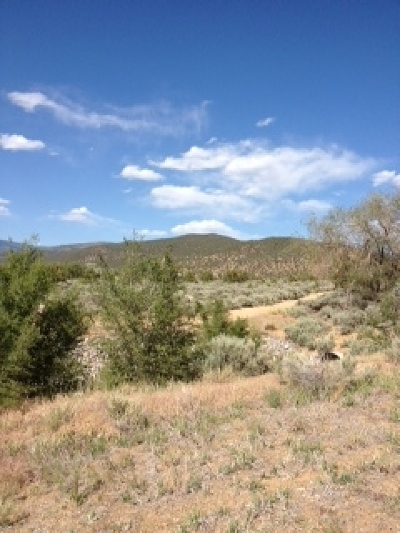 Taos Residential Lots & Land For Sale: Yz Paseo Del Canon