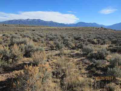 Questa Residential Lots & Land Active-Extended: 3420 No Name Rd