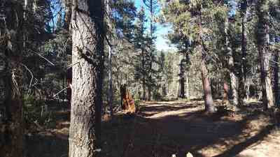 Taos Residential Lots & Land Active-Extended: Lots 147and148 1 Acre Circle Drive