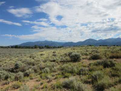 Taos Residential Lots & Land For Sale: Lot 12 Comanche Road