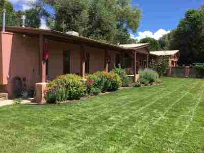 Taos Single Family Home For Sale: 503 Ranchitos Rd.