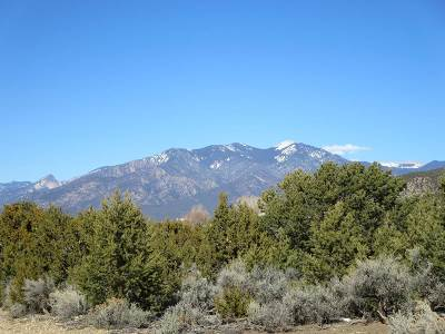 Taos Residential Lots & Land For Sale: Tract C Lot N Verde Road