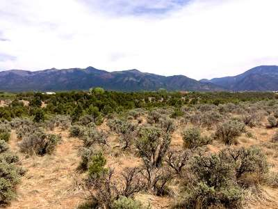Taos Residential Lots & Land For Sale: 299 Hondo Seco Road