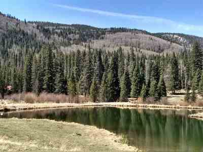Red River Residential Lots & Land For Sale: Lots 118,119 Wheeler Peak Road