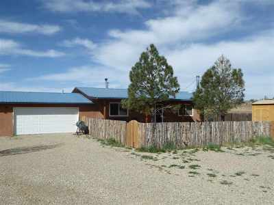 Taos County Single Family Home Active/Under Contract: 25 Las Palomas