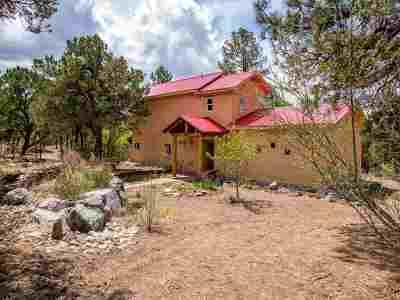Taos Single Family Home For Sale: 42 Turkey Springs Rd
