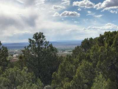 Taos Residential Lots & Land For Sale: 529 Pinon Ridge
