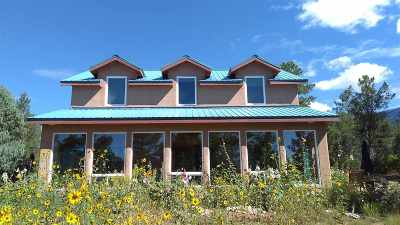 Taos County Single Family Home For Sale: 9 Dutch's Rd