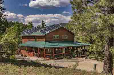 Taos County Single Family Home For Sale: 62 Lodge Road