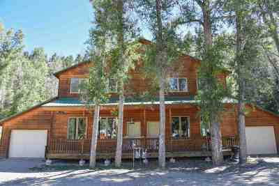 Red River NM Single Family Home For Sale: $579,500