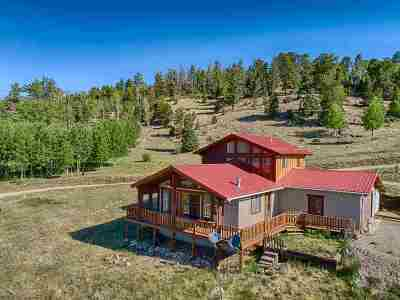 Red River Single Family Home For Sale: 1622 Hwy 38
