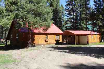Red River NM Single Family Home For Sale: $299,000