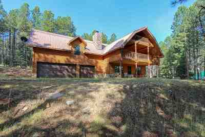 Angel Fire Single Family Home Active/Under Contract: 64 N Valle Grande Trail