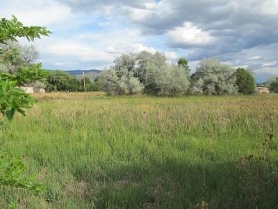 Taos Multi Family Home For Sale: 441 La Posta