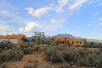 Taos County Single Family Home For Sale: 1321 Mesa Vista