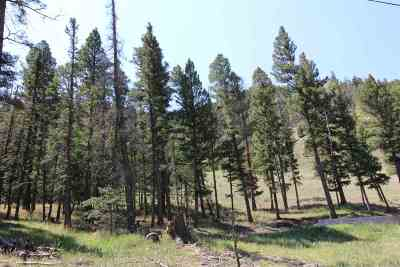 Red River NM Residential Lots & Land For Sale: $69,000