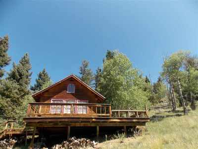 Red River NM Single Family Home For Sale: $129,500