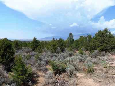 Taos Residential Lots & Land For Sale: 2/10 M Sagebrush Trail