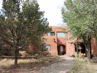 Taos County Townhouse For Sale: 248 State Road 150