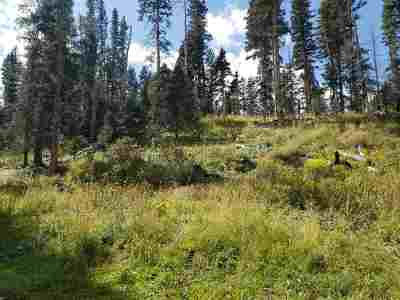 Red River NM Residential Lots & Land For Sale: $45,000