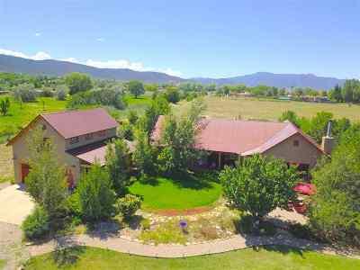 Taos County Single Family Home For Sale: 825 Camino Anglada