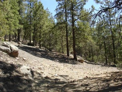 Taos Residential Lots & Land For Sale: Off Hwy 64