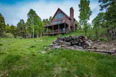 Angel Fire Single Family Home For Sale: 17 Sunset Overlook