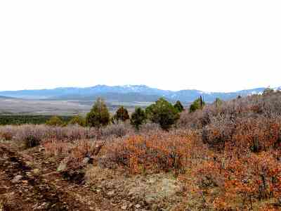 Taos Residential Lots & Land For Sale: Delano Ranch Cerro Montoso Rd
