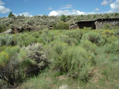 Taos Residential Lots & Land For Sale: Hwy 64 Near 285 Intersection