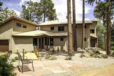 Eagle Nest Single Family Home Active-Price Changed: 88 Rd B 6