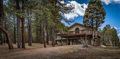 Angel Fire Single Family Home For Sale: 29 Mountain Lake Way