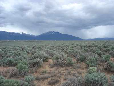 Taos Residential Lots & Land Active-Price Changed: Off Gravel Pit Rd
