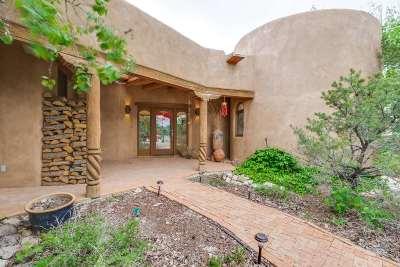 Taos Single Family Home For Sale: 1007 Camino Del Monte