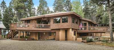 Angel Fire Single Family Home Active-Price Changed: 100 Cimarron Trail