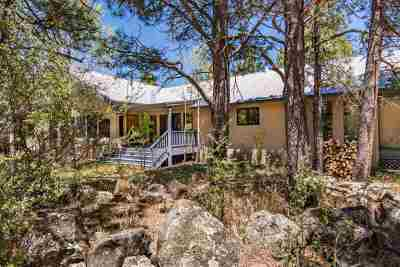 Angel Fire Single Family Home Active-Price Changed: 51 Susan Lane