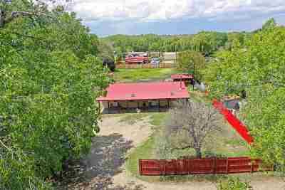 Taos Single Family Home For Sale: 610 Don Jose Cortez