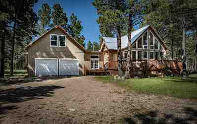 Angel Fire Single Family Home Active/Under Contract: 46 Susan Lane