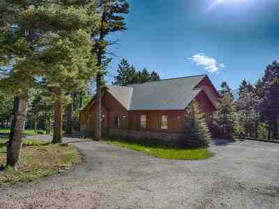 Angel Fire Single Family Home For Sale: 80 Cimarron Trail