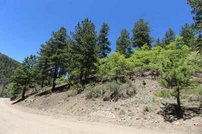 Red River NM Residential Lots & Land For Sale: $32,500