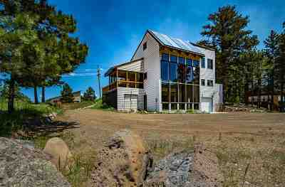 Angel Fire Single Family Home For Sale: 73 Valley Road