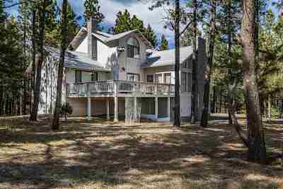 Angel Fire Single Family Home For Sale: 46 Lakeview Park Drive